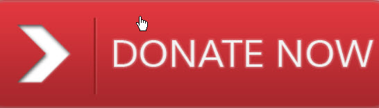 donate now red